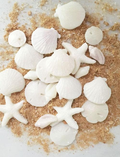 cooked sugar seashell recipe